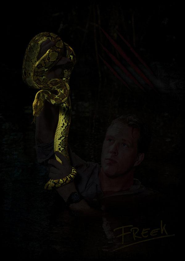 Poster donker