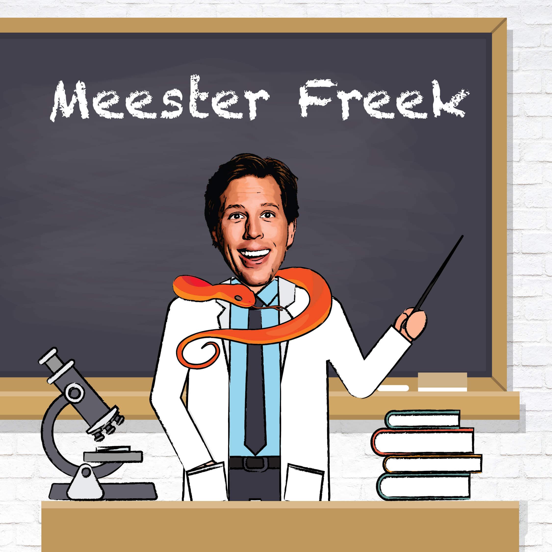 MeesterFreekSocial-02